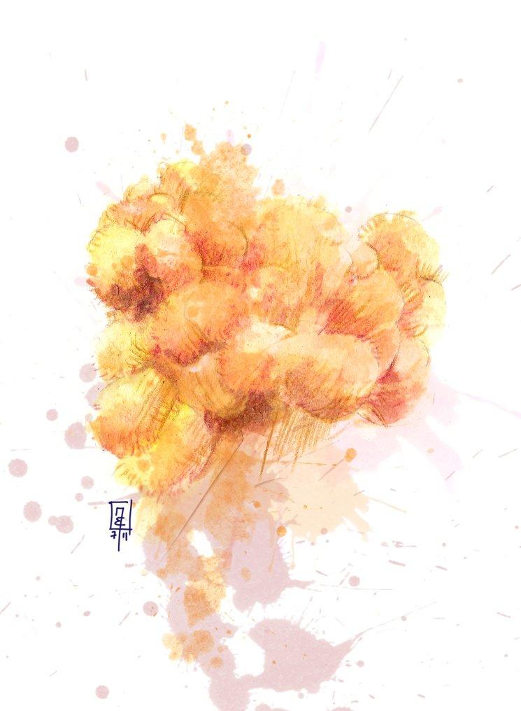 Saltimbocca vom Igelstachelbart